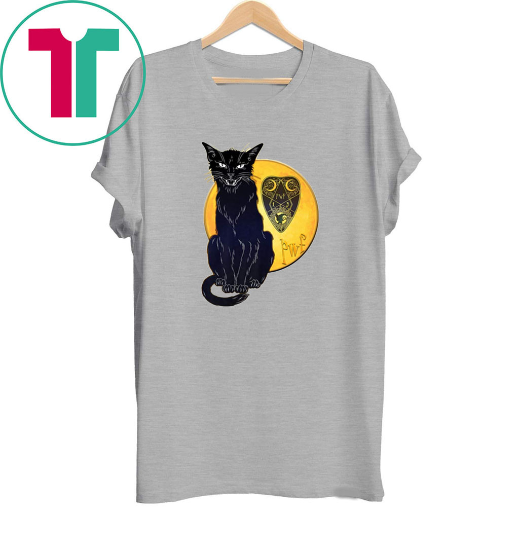 Paranormal Women's Fiction Cat and Moon Tee Shirt