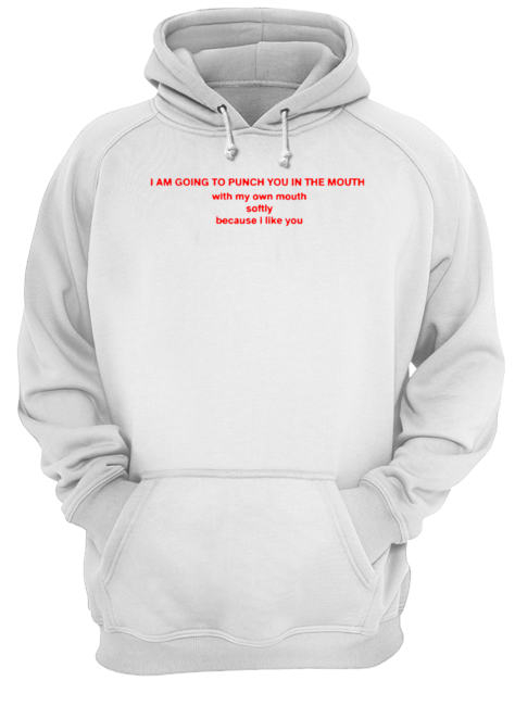I Am Going To Punch You In The Mouth With My Mouth  Unisex Hoodie