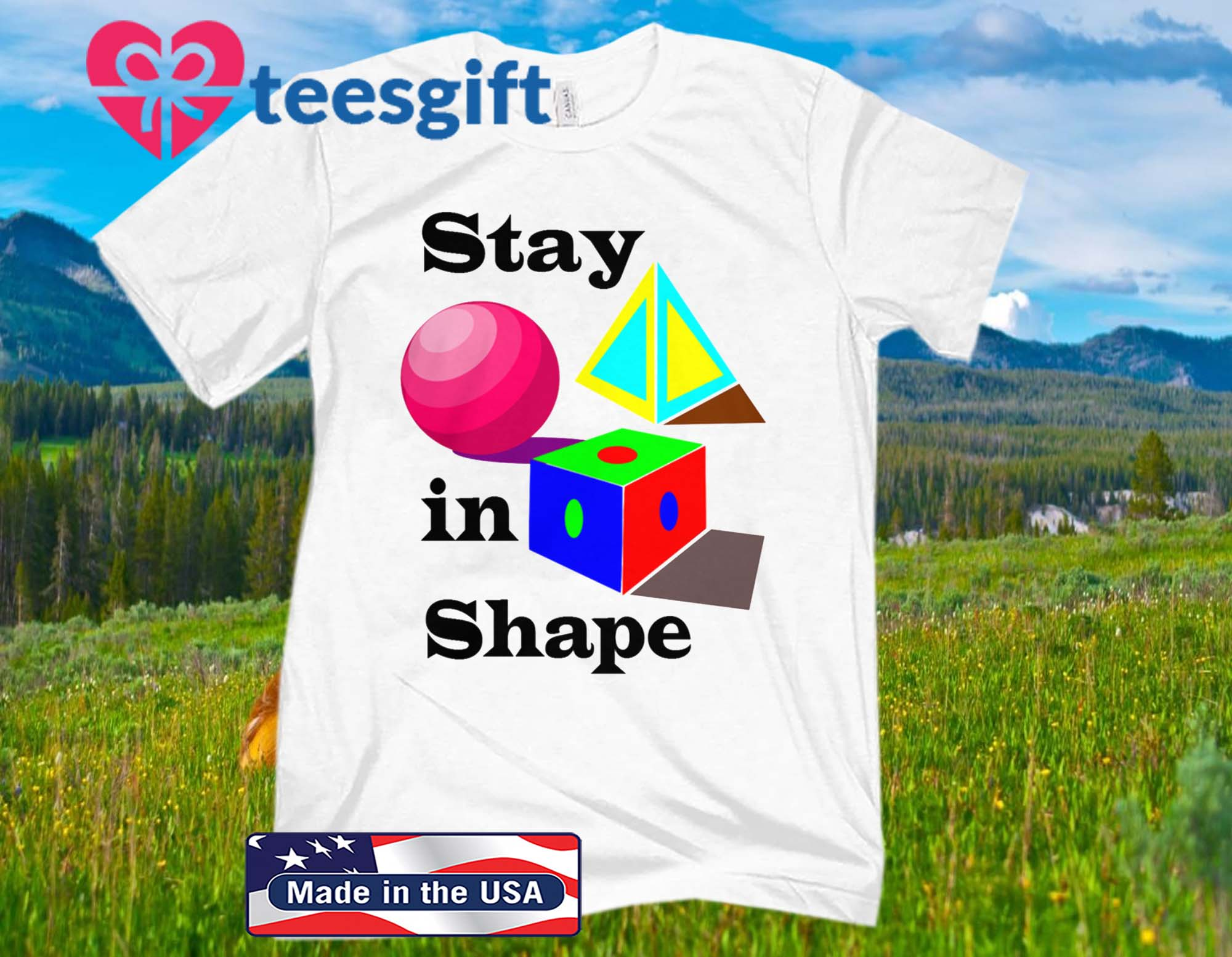 Stay in Shape Official T-Shirt