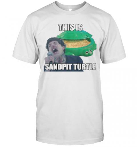This Is Sandpit Turtle T-Shirt Classic Men's T-shirt
