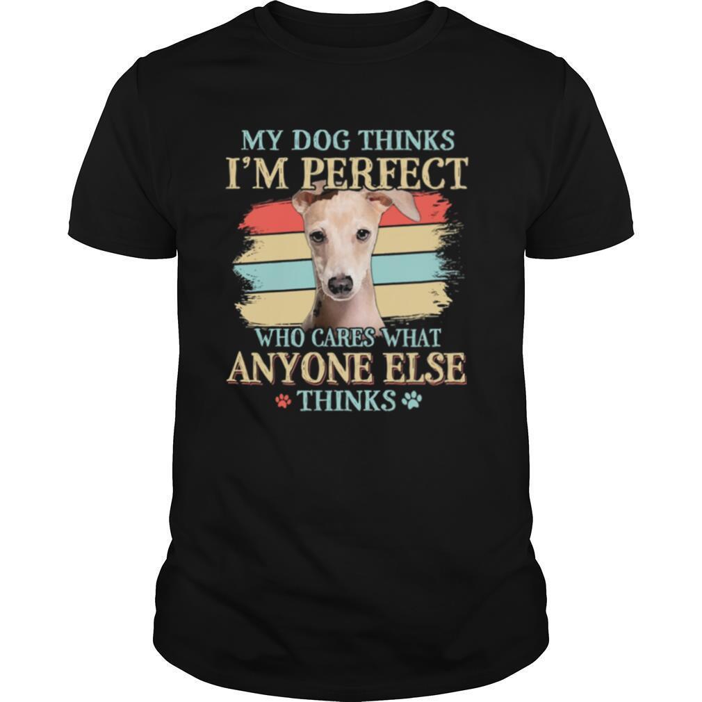 Greyhound my dog thinks Im perfect who cares what anyone else thinks shirt
